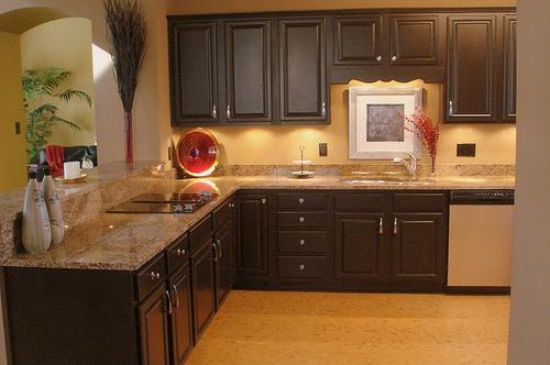 Mark austin homes budget kitchen makeover for Budget kitchen cabinets
